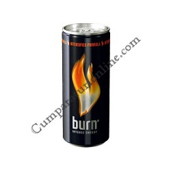 Burn Intense Energy doza 6x0,25l. pret/buc.