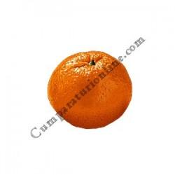 Mandarine import pret/kg.