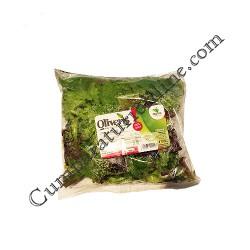 Salata de primavara Oliveris 100 gr.