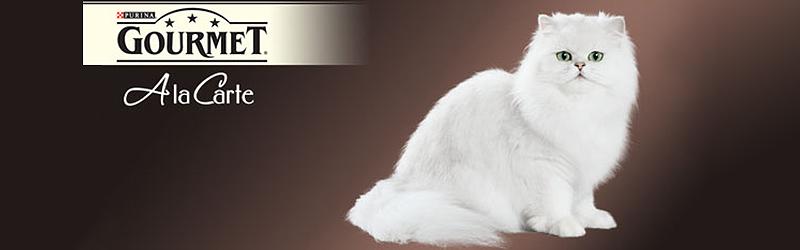 Gourmet – Gama noua de hrana pentru pisici