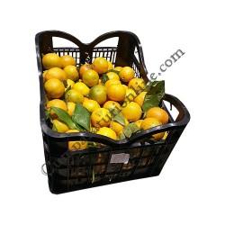 Clementine import pret/kg.